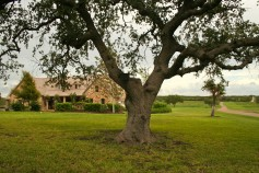 Bee County TX Ranch for Sale