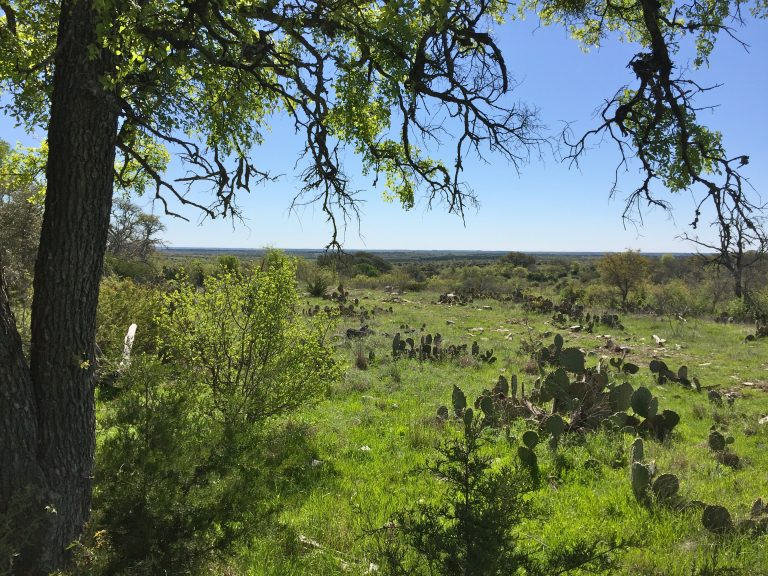 Lampasas Ranch for Sale