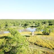 Incredible South Texas Ranch for Sale